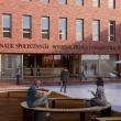 nowy budynek Prawa i Administracji oraz Nauk Społecznych (2)