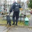 Ełk cmentarz-pies