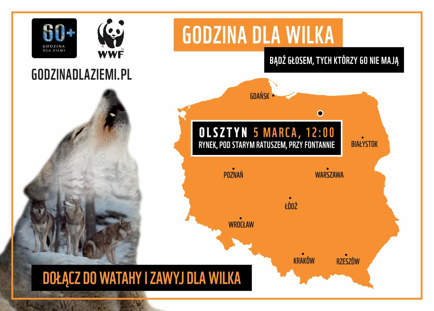 olsztyn - zawyj dla wilka5