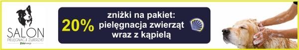 psia-myjnia2