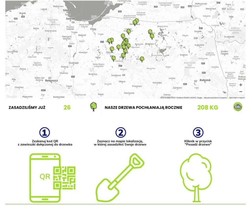 Olsztyńska firma w inicjatywie sadzenia drzew w związku ich masową wycinką